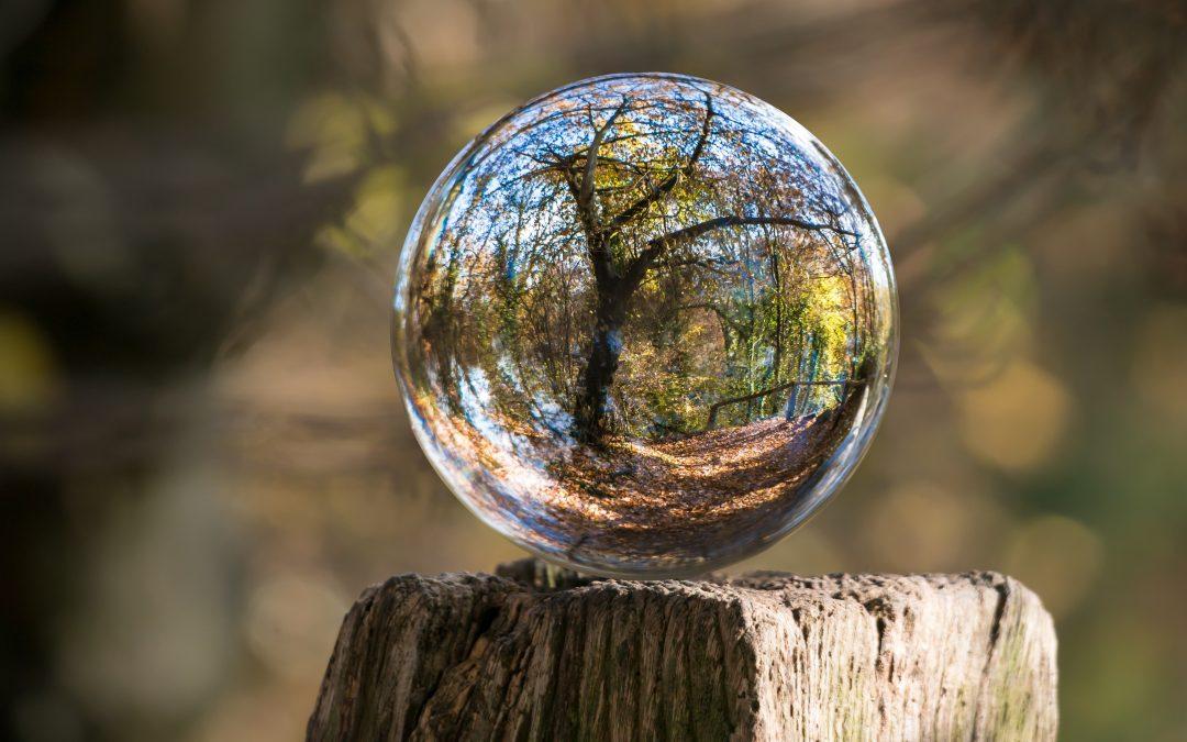 Nuovo percorso online di Mindfulness